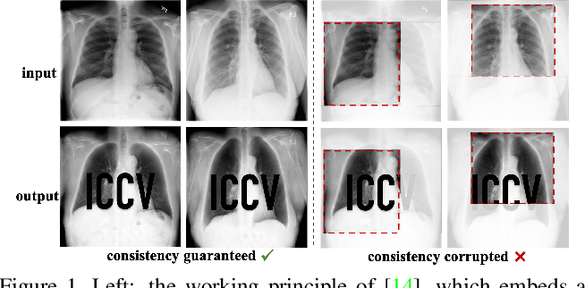 Figure 1 for Exploring Structure Consistency for Deep Model Watermarking