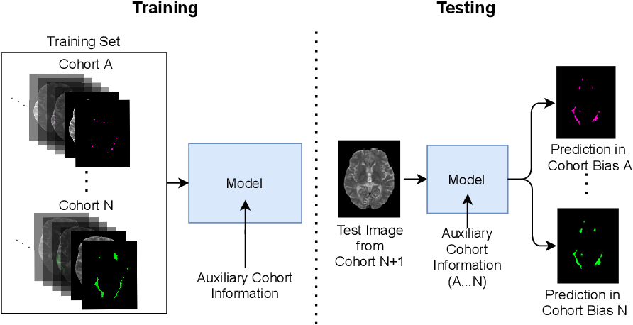 Figure 1 for Cohort Bias Adaptation in Aggregated Datasets for Lesion Segmentation