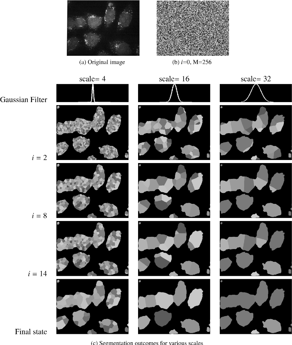 Figure 1 for Guaranteeing Convergence of Iterative Skewed Voting Algorithms for Image Segmentation