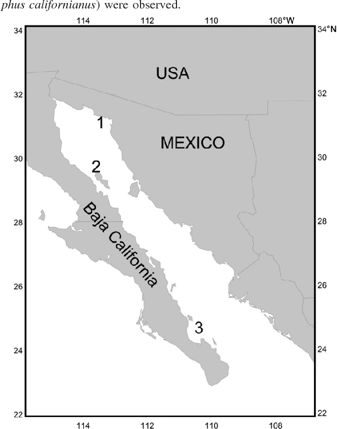 Figure 1 From Spatial And Temporal Patterns Of Territory Use Of Male