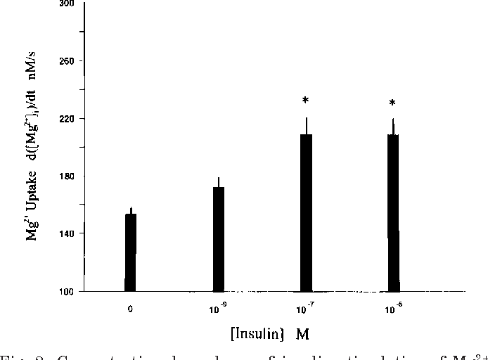 Insulin stimulates Mg 2 1 uptake in mouse distal convoluted tubule ...