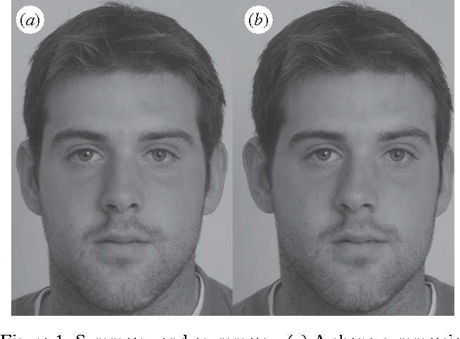 Facial symmetry and judgements of attractiveness health and personality