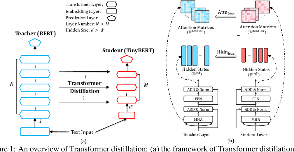 Figure 2 for TinyBERT: Distilling BERT for Natural Language Understanding