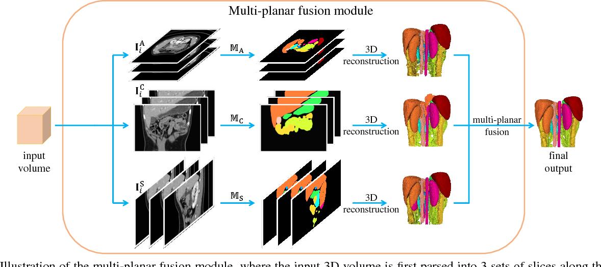 Figure 3 for Semi-Supervised Multi-Organ Segmentation via Deep Multi-Planar Co-Training