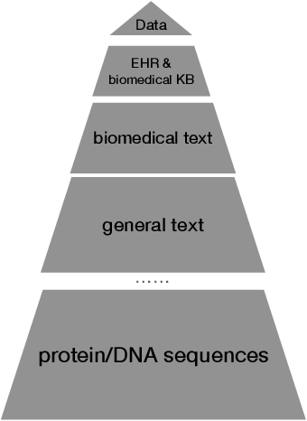Figure 1 for Pre-trained Language Models in Biomedical Domain: A Systematic Survey
