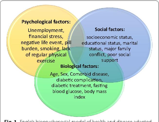 Pdf sexuality a biopsychosocial approach