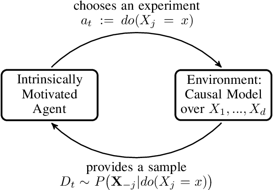 Figure 1 for Optimal experimental design via Bayesian optimization: active causal structure learning for Gaussian process networks