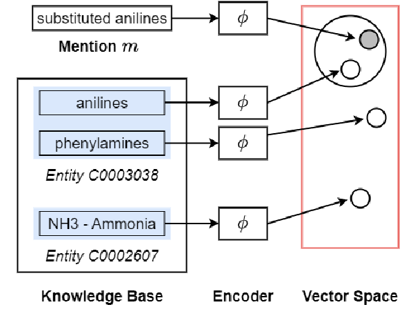 Figure 1 for BERT might be Overkill: A Tiny but Effective Biomedical Entity Linker based on Residual Convolutional Neural Networks