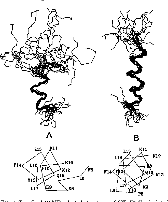 Figure 6 From Structure Of The C Terminal Fragment 300 320 Of The