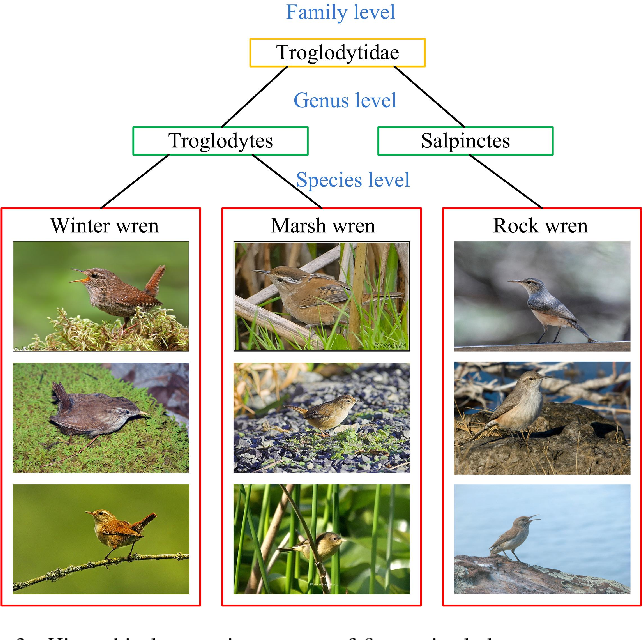 Figure 4 for Zero-Shot Fine-Grained Classification by Deep Feature Learning with Semantics