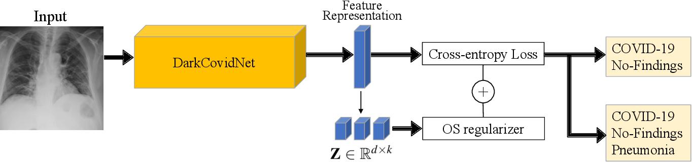 Figure 3 for Interpretable COVID-19 Chest X-Ray Classification via Orthogonality Constraint