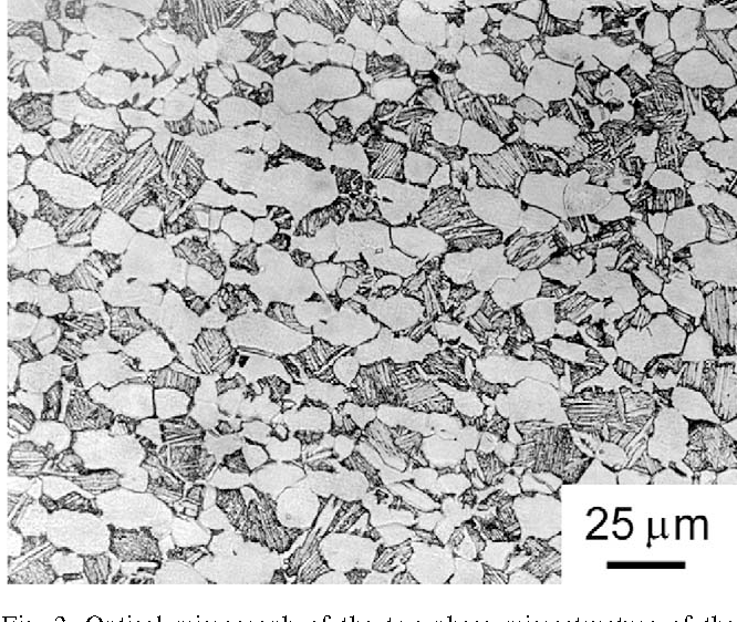 Fig. 2. Optical micrograph of the two-phase microstructure of the bimodal Ti