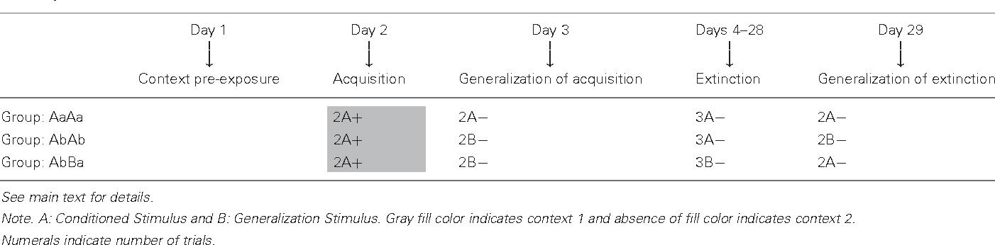 stimulus generalization