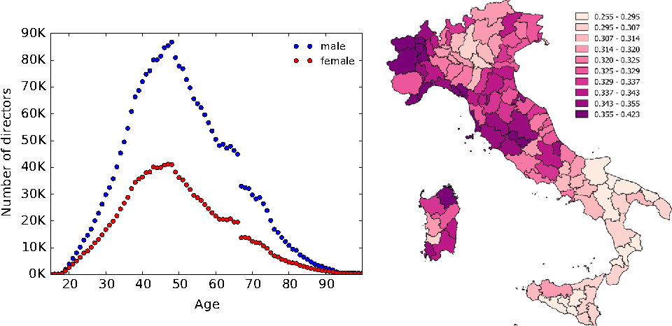 Fig. 3 Director distributions: by gender/age (left), by residence province (right)