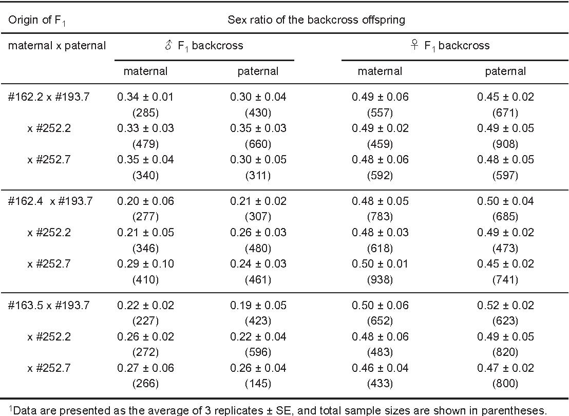 Sex ratio natural population drosophila