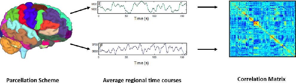 Figure 1 for A Joint Network Optimization Framework to Predict Clinical Severity from Resting State Functional MRI Data