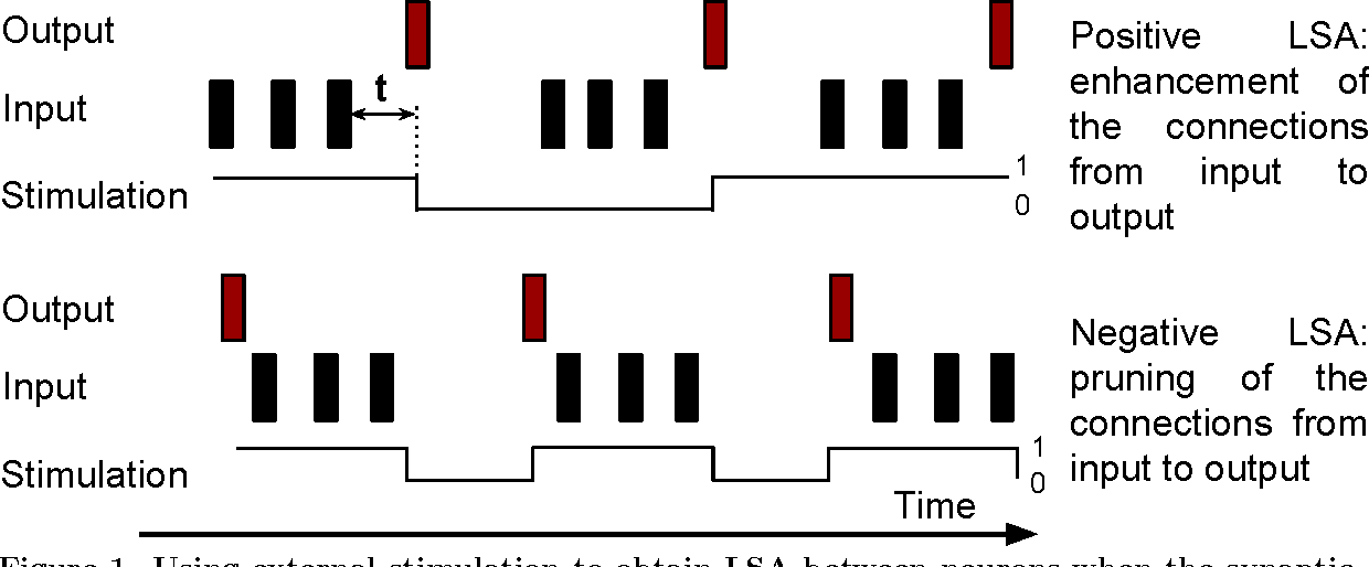 Figure 1 for Learning by Stimulation Avoidance: A Principle to Control Spiking Neural Networks Dynamics