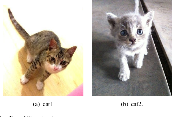 Figure 1 for A simple and effective postprocessing method for image classification