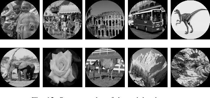 Figure 4 for A Survey of Orthogonal Moments for Image Representation: Theory, Implementation, and Evaluation