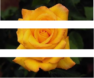 Fig. 1. Image divided horizontally into three subimages