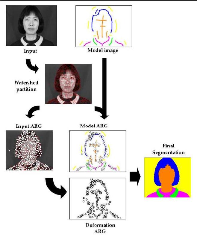 Figure 3 for A New Algorithm for Interactive Structural Image Segmentation