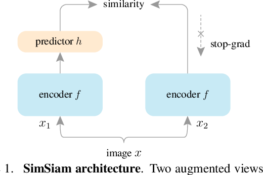 Figure 1 for Exploring Simple Siamese Representation Learning