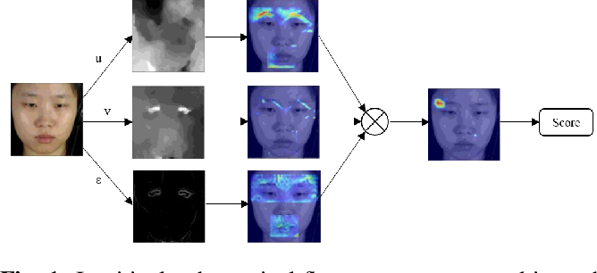 Figure 1 for Shallow Optical Flow Three-Stream CNN for Macro- and Micro-Expression Spotting from Long Videos