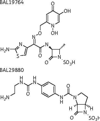 Figure 1 From Activity Of Bal30376 Monobactam Bal19764 Bal29880