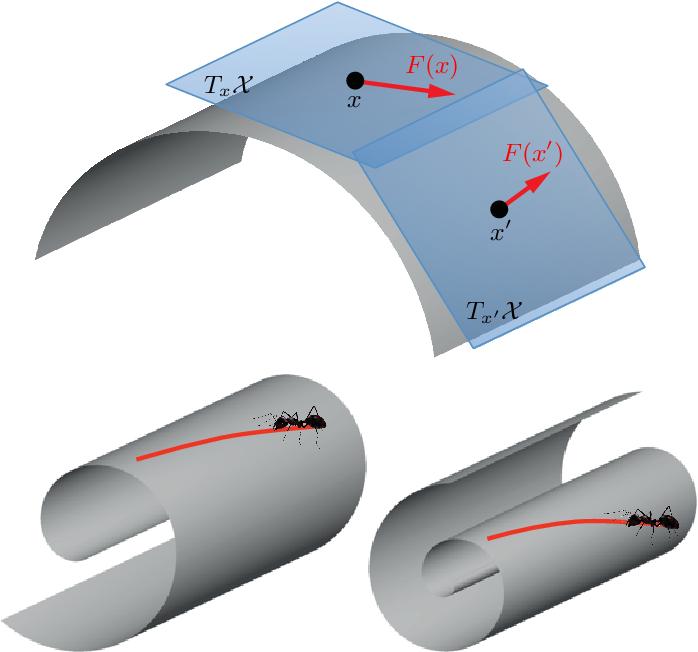 Figure 1 for Geometric deep learning: going beyond Euclidean data