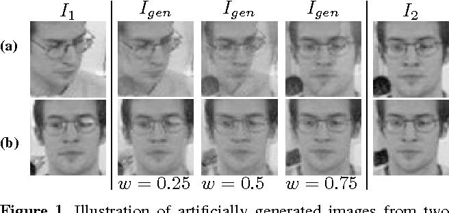 Figure 1 for Matching Image Sets via Adaptive Multi Convex Hull