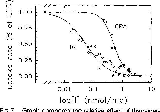 FIG 7. Graph compares the relative effect of thapsigargin (TG, open symbols) and cyclopiazonic acid (CPA, filled symbols) on sarcoplasmic reticulum Ca2l uptake in rabbit ventricular myocytes. CTR indicates control value. The Ca2l uptake rate in the presence of TG or CPA was normalized to the corresponding uptake rate at 1 gmol/L free [Ca2+] in the absence of TG or CPA. The data were fit with a Hill equation. The Hill coefficient was 1.15, and the half-maximal reduction of the uptake rate (K112) was 55 pmol/mg for TG, whereas the Hill coefficient was 2.2, and the K1/2 was 510 pmol/mg for CPA.