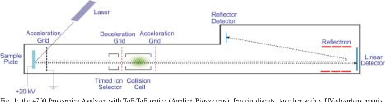 Figure 2 from from genomes to vaccines via the proteome semantic figure 1 malvernweather Choice Image