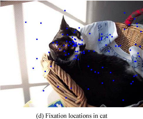 Fig. 6. Description of fixation locations in test pictures