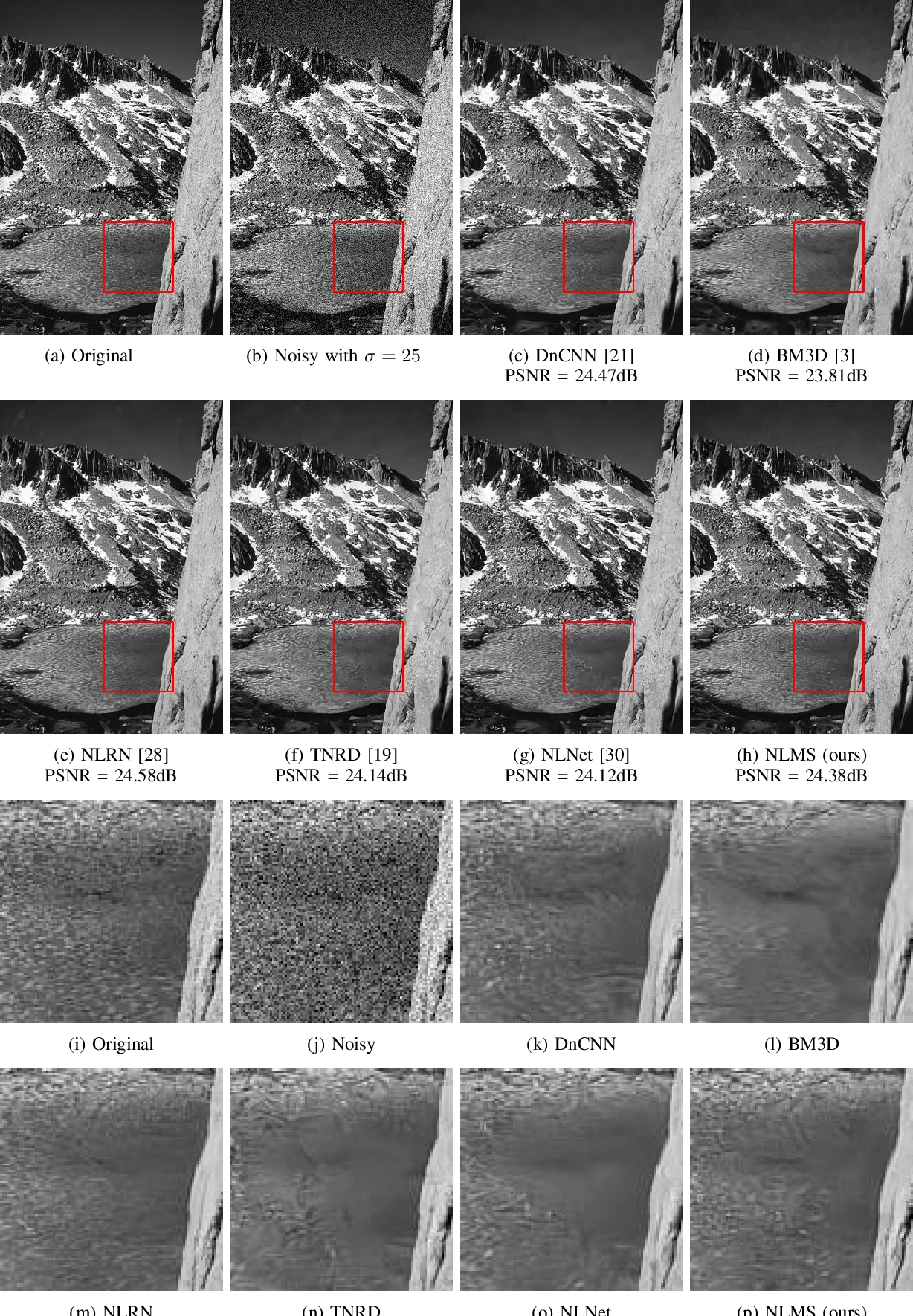 Figure 3 for Low-Weight and Learnable Image Denoising