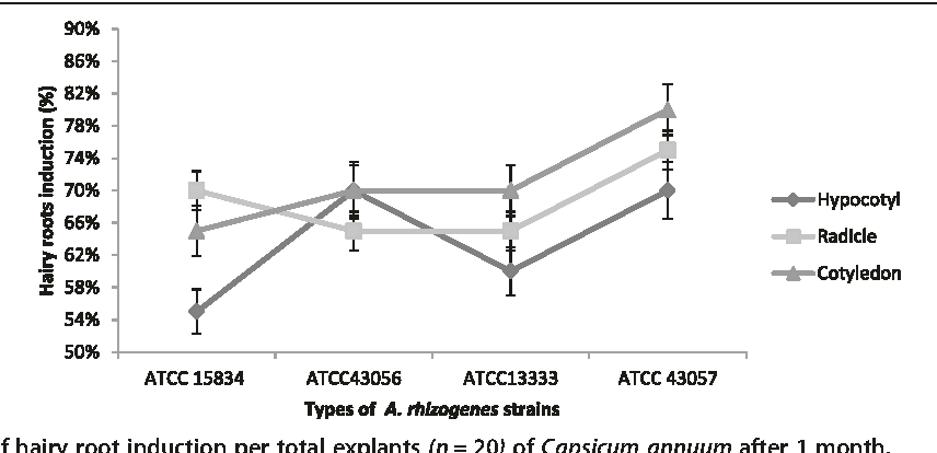 Induction of hairy roots by various strains of agrobacterium figure 4 ccuart Image collections