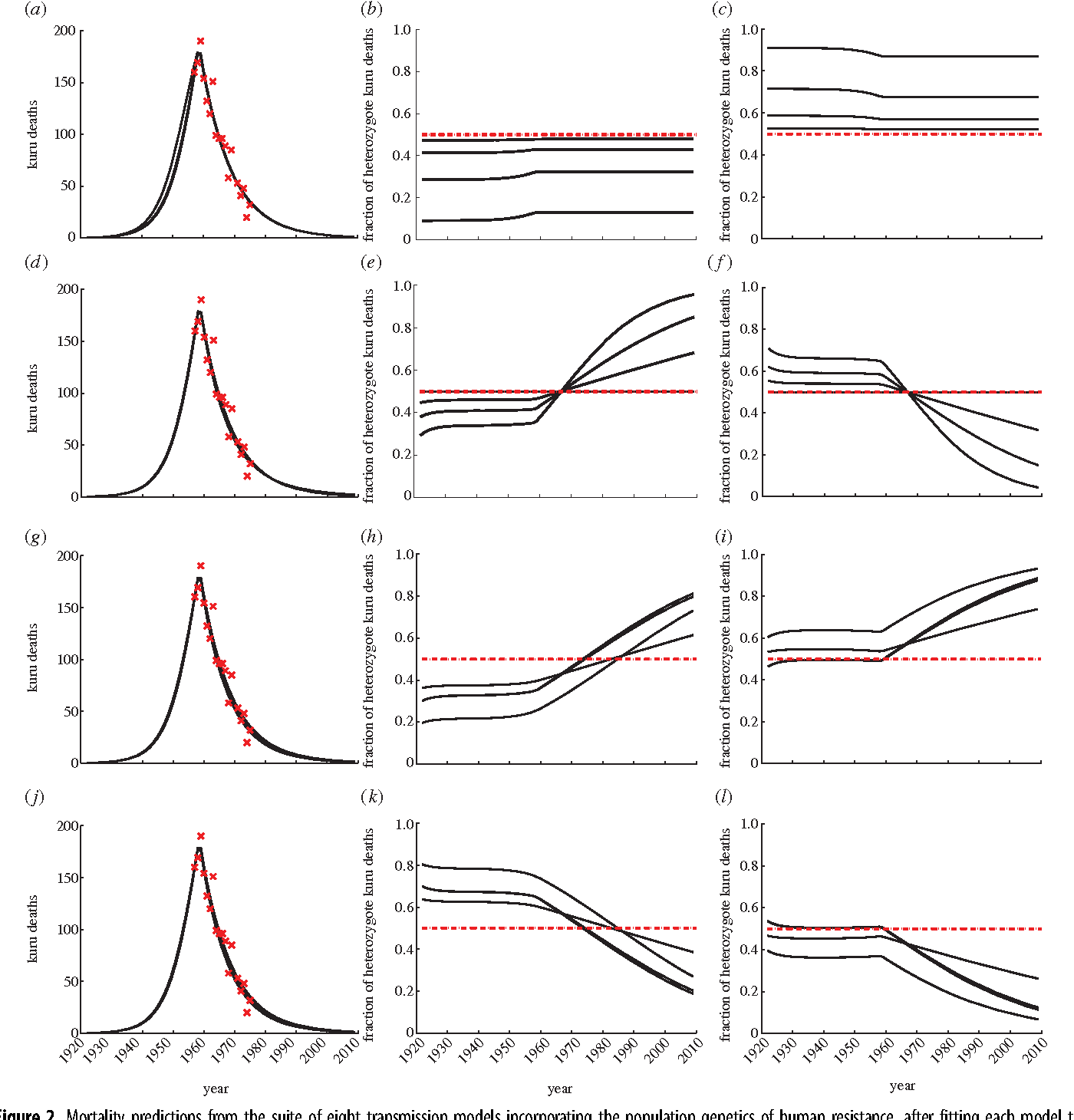 Figure 2. Mortality predictions from the suite of eight transmission models incorporating the population genetics of human resistance, after fitting each model to the kuru incidence data indicated by crosses [29,30]. Changing the transmission and/or incubation rates of the heterozygotes relative to the homozygotes can have a substantial impact on the predicted mortality rate of heterozygotes, but little impact on the overall predicted kuru incidence. (a) Model T: black lines show the predicted kuru mortality from varying bMV and bMM such that the predicted incidence is very similar to the best-fit model. (b) Model Ti: the fraction of kuru mortality attributable to heterozygotes with the same values of bMV and bMM used in (a) such that bMV, bMM. (c) Model Tii: the fraction of kuru mortality attributable to heterozygotes with the same values of bMV and bMM used in (a) such that bMV . bMM. (d ) Model I: predicted kuru mortality from varying yMV and yMM. (e) Model Ii: the same values of yMV and yMM used in (d ) such that yMV, yMM. ( f ) Model Iii: the same values of yMV and yMM used in (d ) such that yMV . yMM. (g,j ) Model B: predicted kuru mortality from varying bMV, bMM, yMV and yMM. (h) Model Bi: the same values of bMV, bMM, yMV and yMM used in (g) and ( j ) such that bMV, bMM and yMV, yMM. (i) Model Bii: the same values of bMV, bMM, yMV and yMM used in (g) and ( j ) such that bMV, bMM and yMV . yMM. (k) Model Biii: the same values of bMV, bMM, yMV and yMM used in (g) and ( j ) such that bMV . bMM and yMV, yMM. (l ) Model Biv: the same values of bMV, bMM, yMV and yMM used in (g) and ( j ) such that bMV . bMM and yMV . yMM. (Online version in colour.)