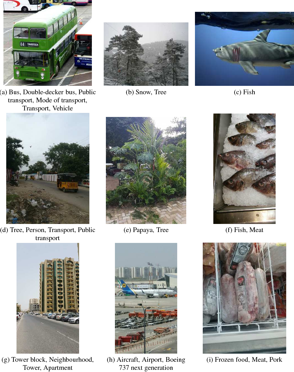 Figure 1 for Adapting Convolutional Neural Networks for Geographical Domain Shift