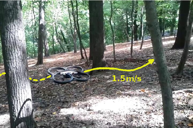 Figure 1 for Learning Monocular Reactive UAV Control in Cluttered Natural Environments
