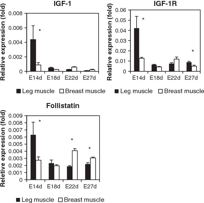 Effects of the regulation of follistatin mRNA expression by IGF-1 in
