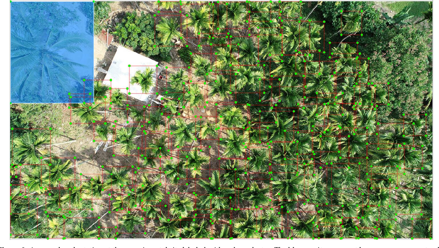 Figure 3 for A Real-time Low-cost Artificial Intelligence System for Autonomous Spraying in Palm Plantations