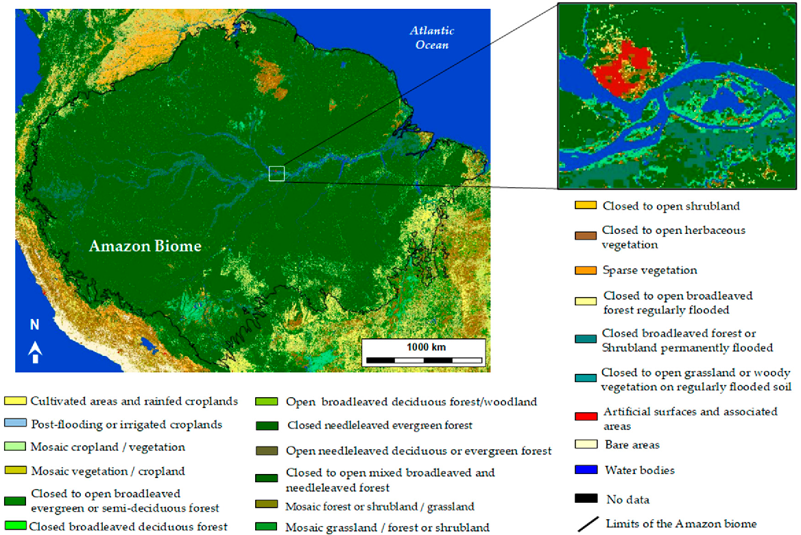 Figure 2 from Wetlands and Malaria in the Amazon: Guidelines for the
