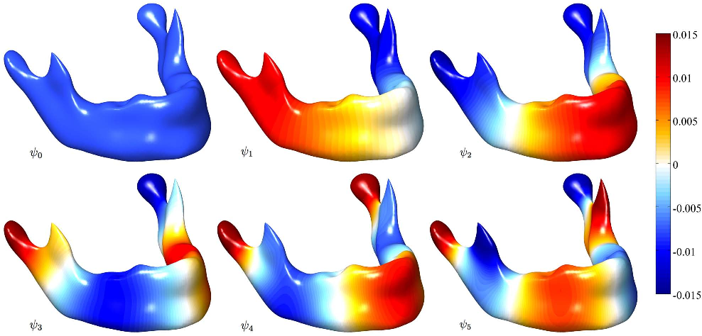 Figure 4 for Unified Heat Kernel Regression for Diffusion, Kernel Smoothing and Wavelets on Manifolds and Its Application to Mandible Growth Modeling in CT Images