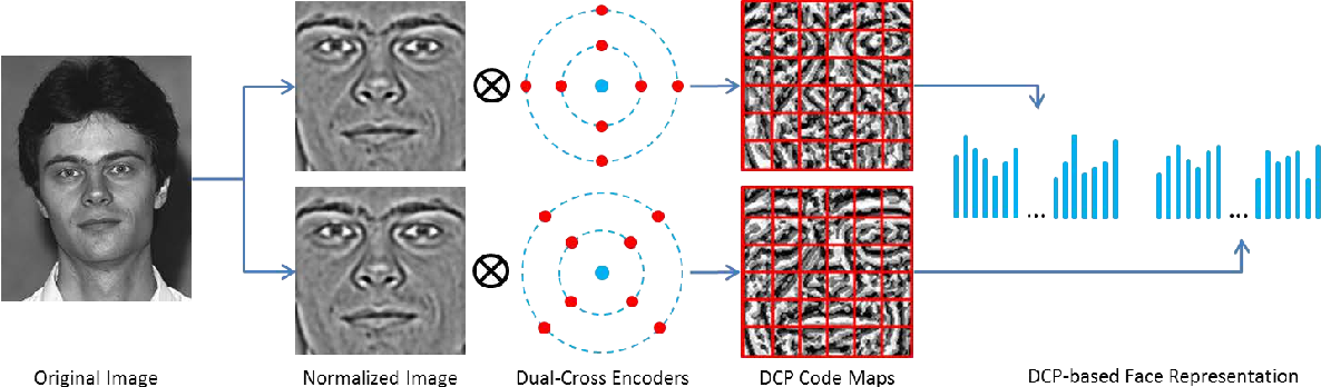 Figure 3 for Multi-Directional Multi-Level Dual-Cross Patterns for Robust Face Recognition
