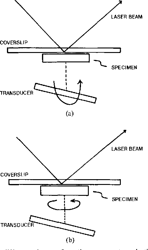 Fig. 5 . Two different schemes of rotation to generate projections for STAM. (a) Rotation of the transducer. (b) Rotation of the specimen.