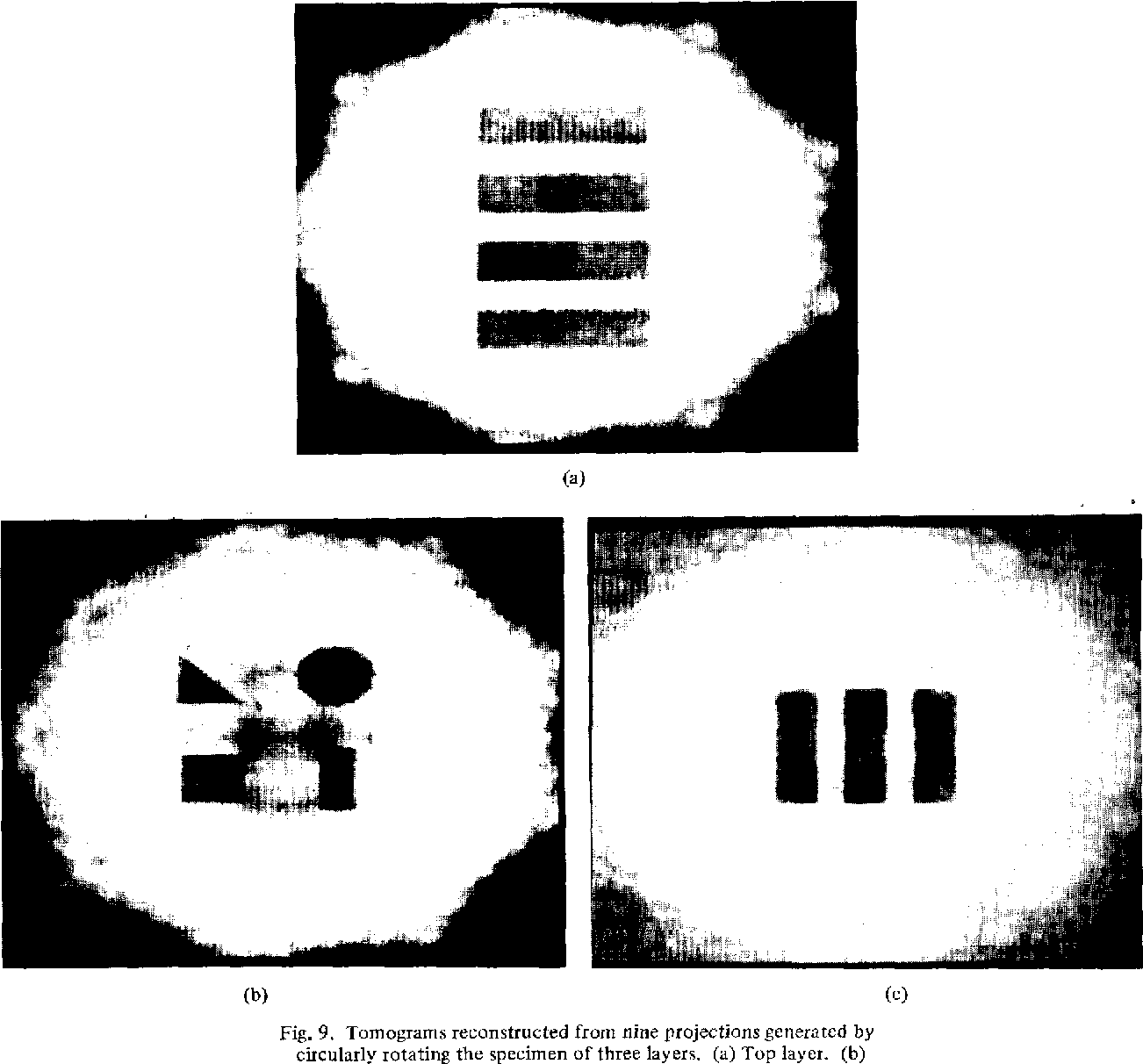 Fig. 9. Tomograms reconstructed from nine projections generated by circularly rotating the specimen of three layers. (a) Top layer. (b)