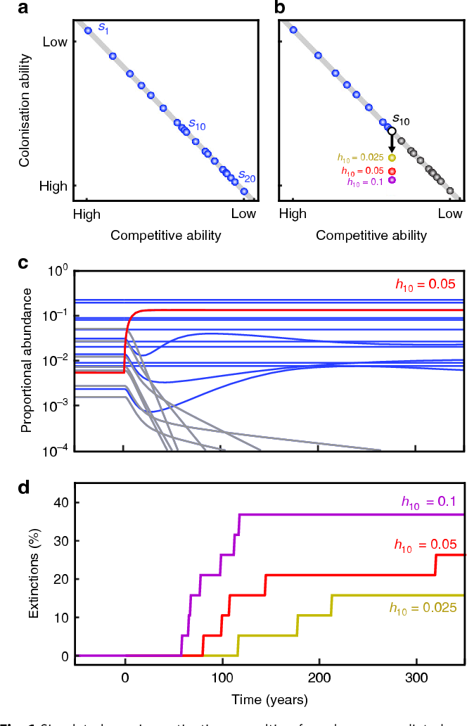 Fig. 1 Simulated species extinctions resulting from human-mediated species invasions. a Competition-colonisation tradeoff surface (grey line) of 20 coexisting species (blue circles) in a metacommunity, going from the