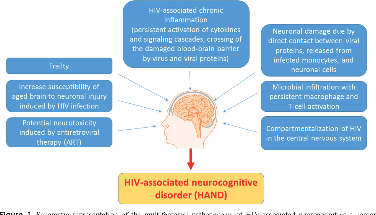 Figure 1 from The burden of HIV-associated neurocognitive disorder ...