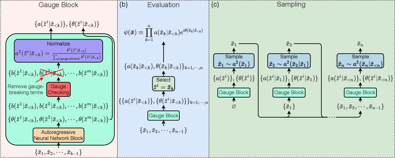 Figure 1 for Gauge Invariant Autoregressive Neural Networks for Quantum Lattice Models