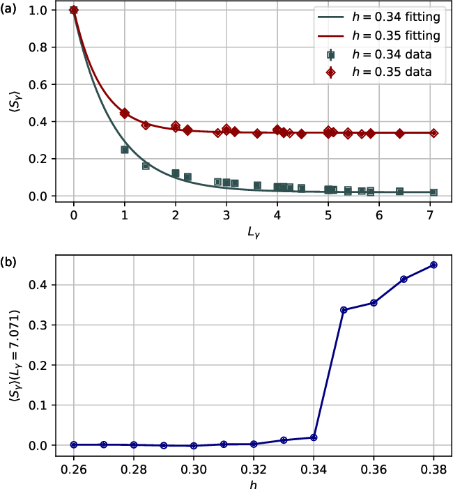 Figure 2 for Gauge Invariant Autoregressive Neural Networks for Quantum Lattice Models