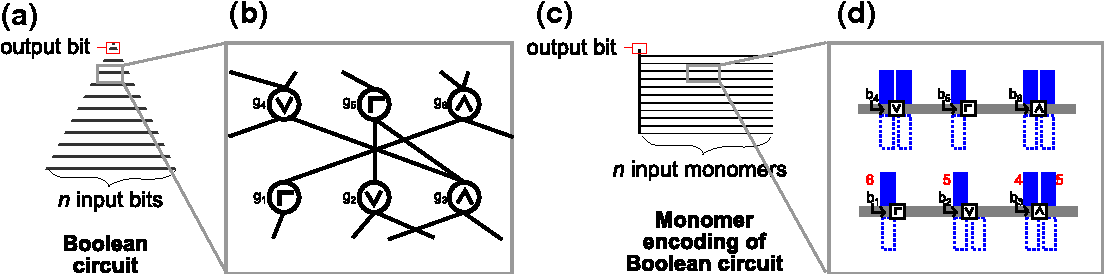 Figure 1 for Parallel computation using active self-assembly